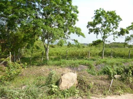 Fotos para Terreno105.000m² Reta 700 Itaguaí-RJ R$18,00 m²