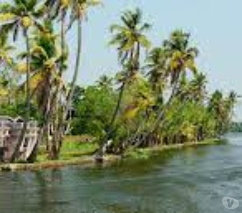 Other Services Ahmedabad - Photos for Exclusive Offers and Discount On KERALA.