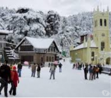 Photos for Grab Latest Deals On Honeymoon Package.shimla