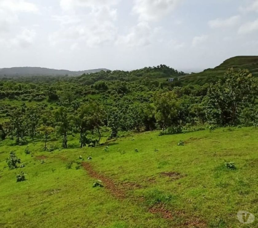Other Services Mumbai - Photos for Property for sale in alibaug