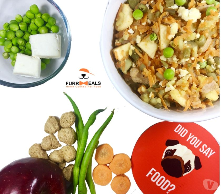 Pet shops New Delhi - Photos for Home Made Best dog food by furrmeals