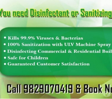 Photos for Pest Control Services in Jaipur