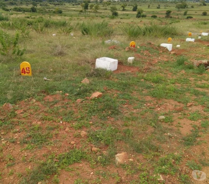 Land sale Mysore - Photos for Buy a site and get umrah free