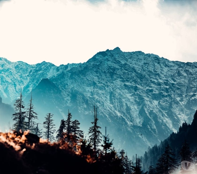 Travel - Tickets Ahmedabad - Photos for Get an exclusive offer on honeymoon packages of Manali