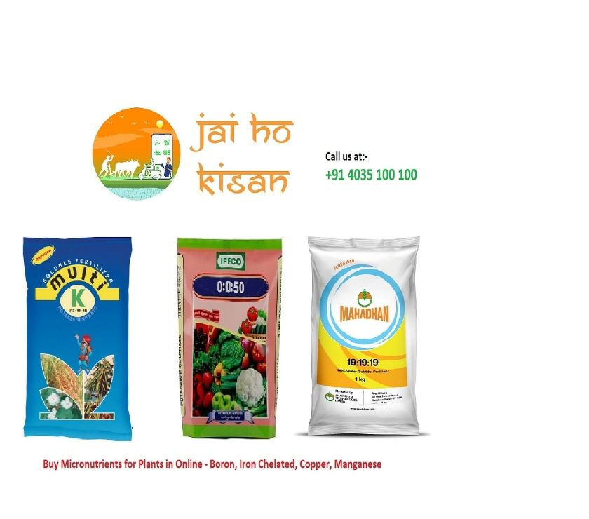 Other Services Hyderabad - Photos for Buy Micronutrients for Plants in Online - Boron, Iron Chelat
