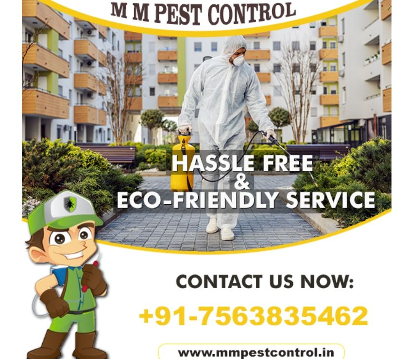 Other Services Patna - Photos for MM Pest Control Service In India