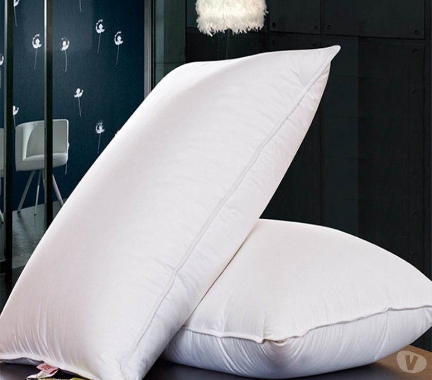 Renovation services Ghaziabad - Photos for Sleep Spa Comfort Therapy Fibre Pillow