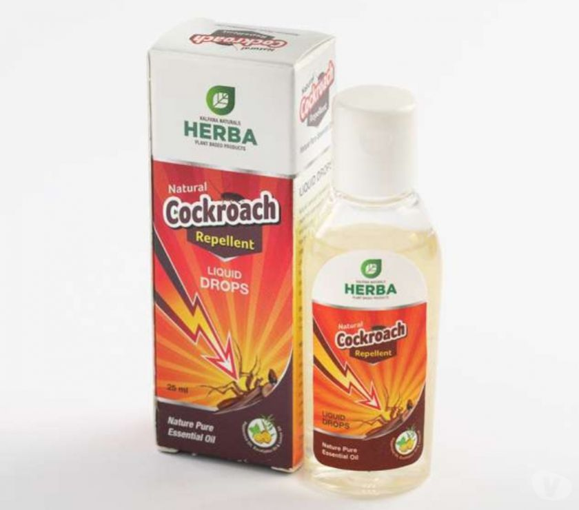 Beauty products Hyderabad - Photos for Natural Cockroach Repellent