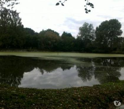 Foto di Vivastreet.it Lago pesca privata con struttura in cemento x abitazione