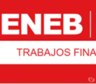 Fotos de Asesoro trabajos finales del MBA ENEB